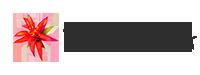 Bromeliads WA Logo